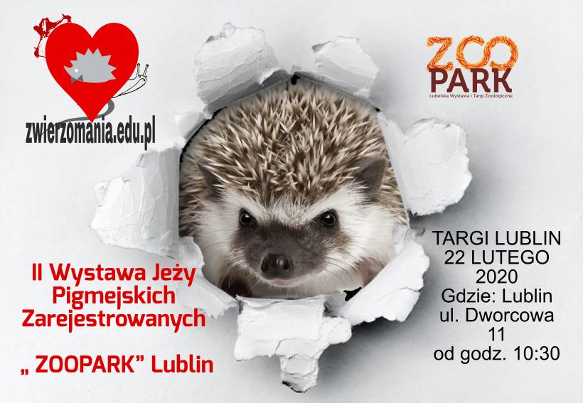 Zgłoszenie jeża Lublin Wystawa